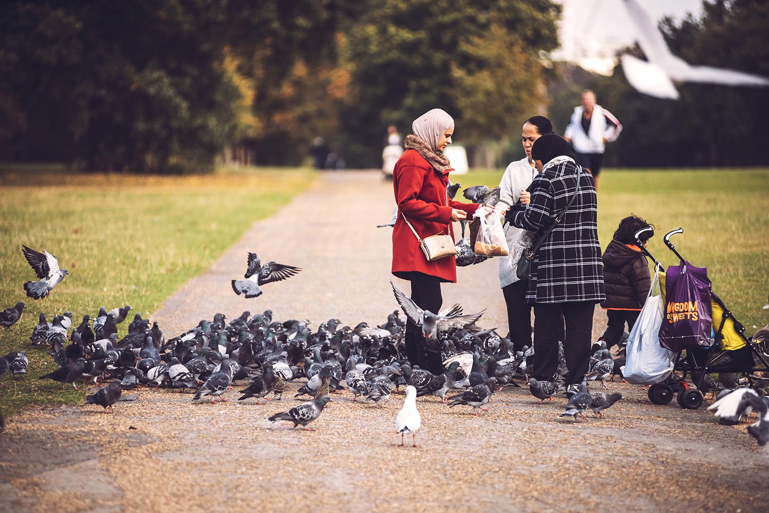 People feeding birds